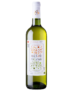 Vecto, bio Bordeaux blanc
